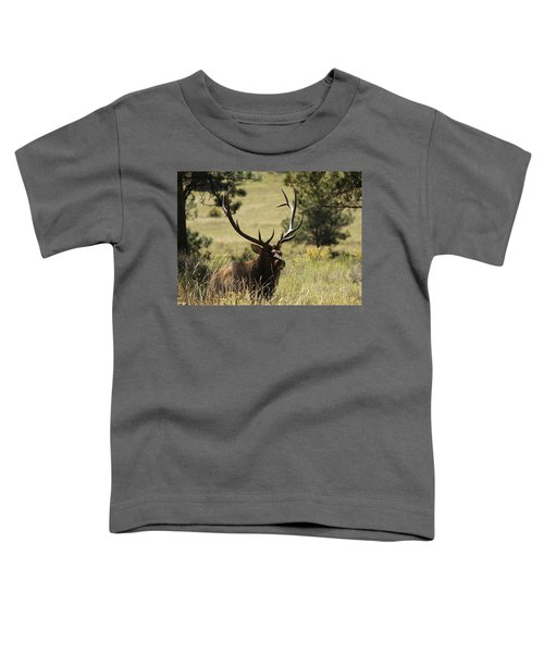 Bullelk1 Toddler T-Shirt