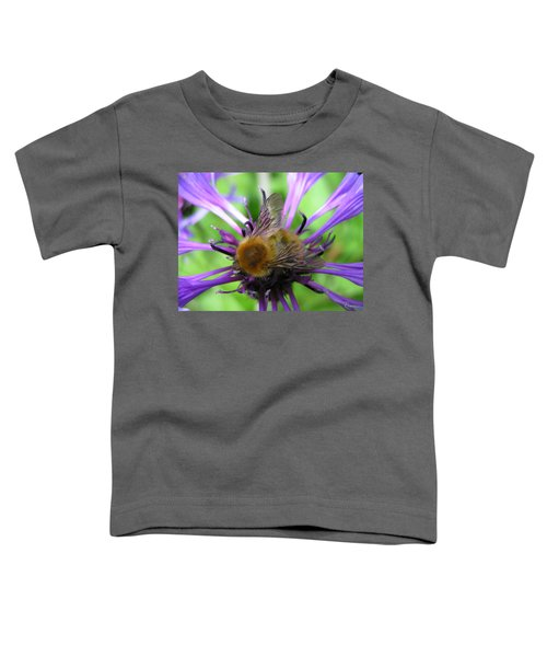 Bumblebee In Blue Toddler T-Shirt