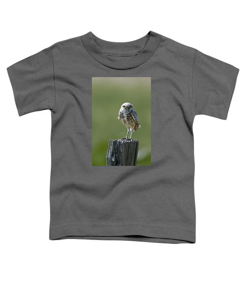 Toddler T-Shirt featuring the photograph Burrowing Owl by Gary Lengyel