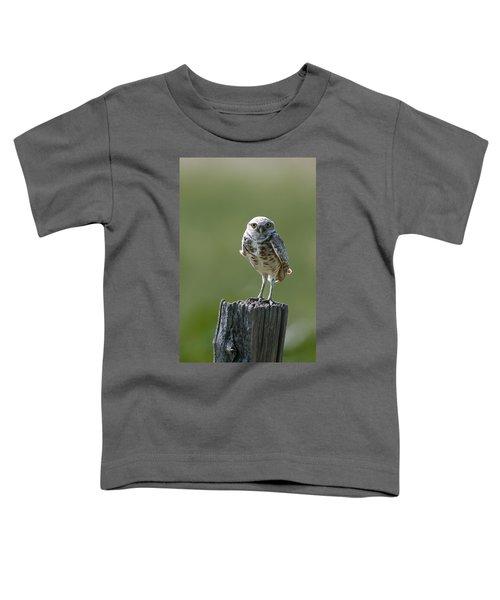 Burrowing Owl Toddler T-Shirt