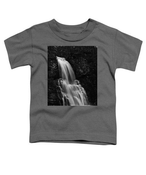Bushkill Falls Toddler T-Shirt