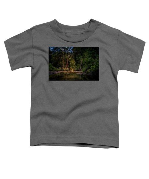Busiek State Forest Toddler T-Shirt