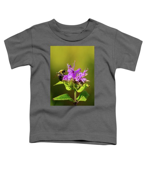 Busy As A Bee Toddler T-Shirt