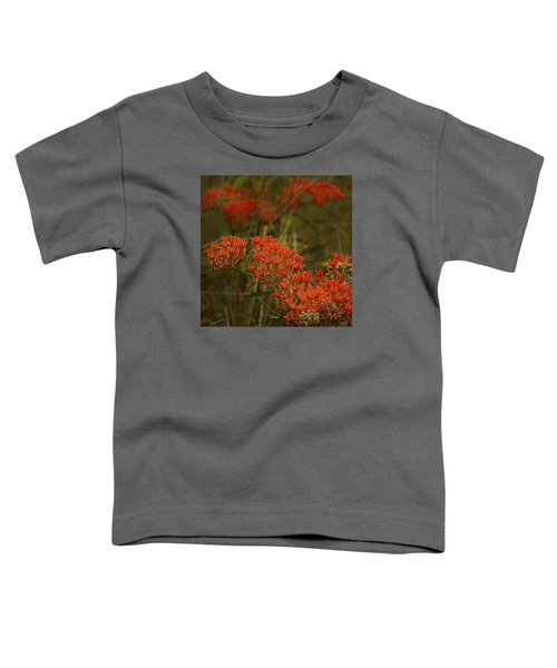 Butterfly Weed Asclepias Tuberosa Toddler T-Shirt by Bellesouth Studio