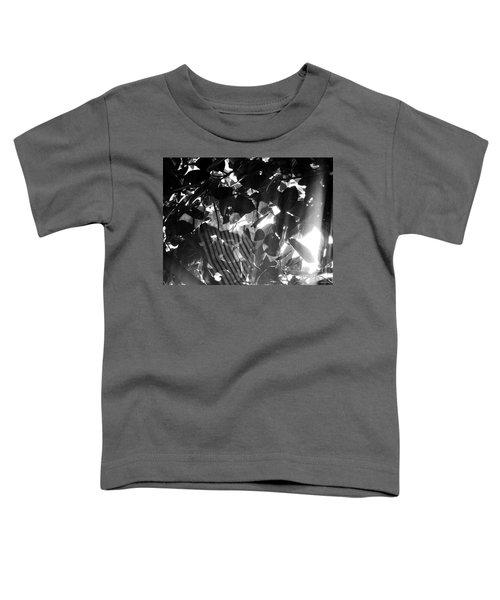 Bw Spider Phenomena Toddler T-Shirt