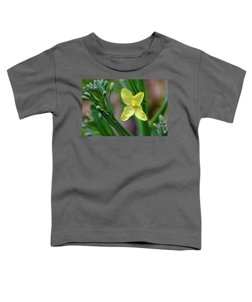 Cabbage Blossom Toddler T-Shirt