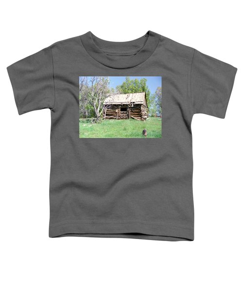 Cabin In The Mountains Toddler T-Shirt