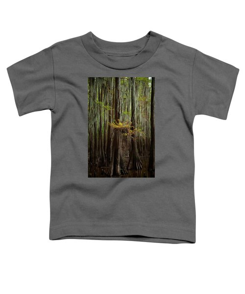 Caddo Lake #5 Toddler T-Shirt