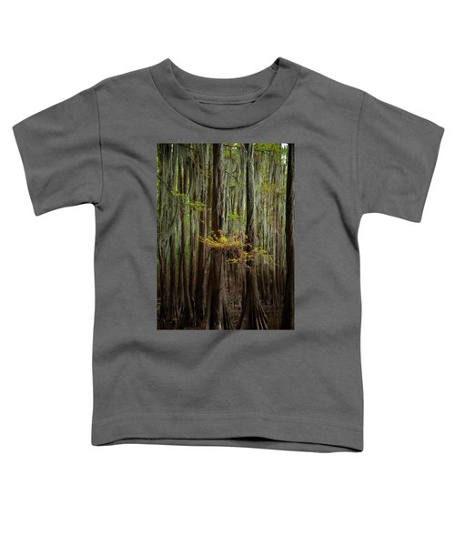 Caddo Lake #5 Toddler T-Shirt