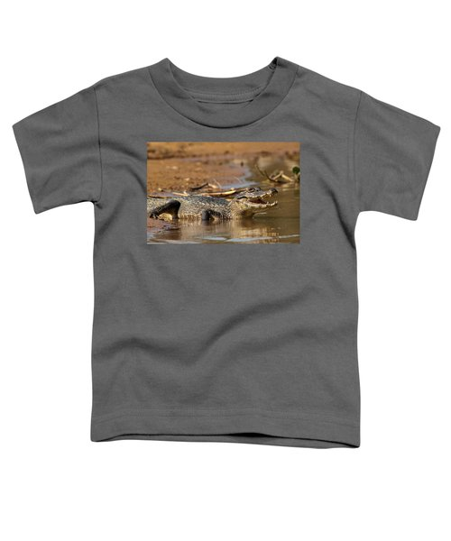 Caiman With Open Mouth Toddler T-Shirt