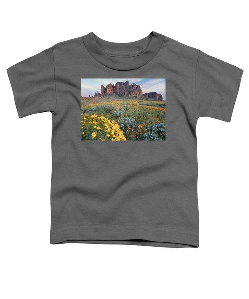 California Brittlebush Lost Dutchman Toddler T-Shirt