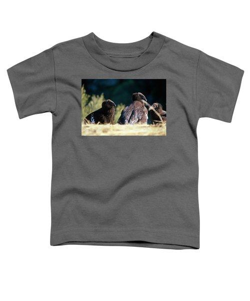 California Condors Toddler T-Shirt