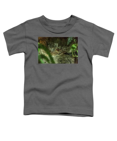 Can You See Me Toddler T-Shirt
