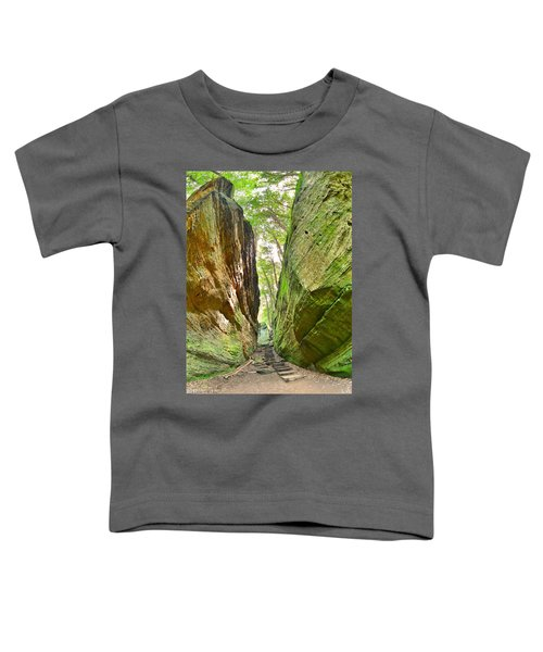 Cantwell Cliffs Trail Hocking Hills Ohio Toddler T-Shirt