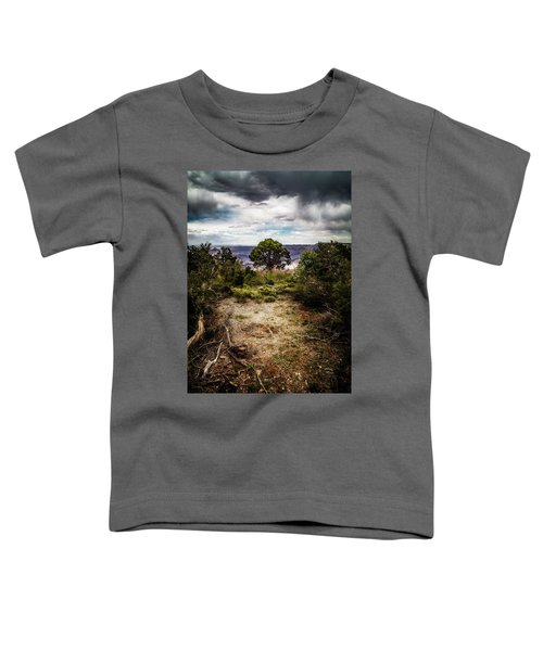 Canyon Sentinel Toddler T-Shirt
