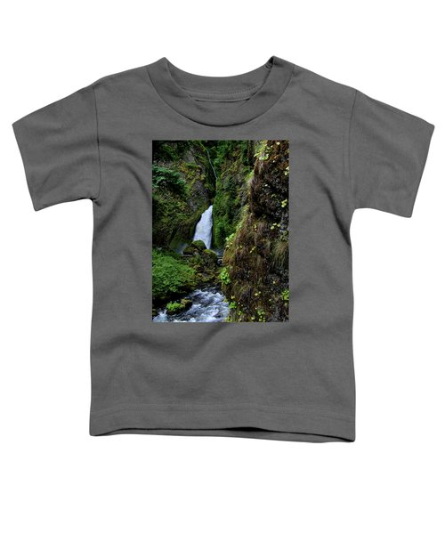 Canyon's End Toddler T-Shirt