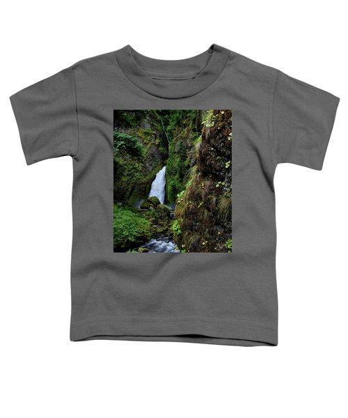 Canyon's End Toddler T-Shirt