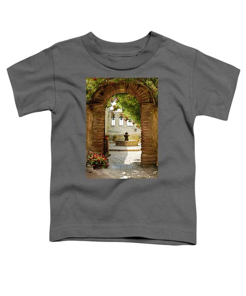 Capistrano Gate Toddler T-Shirt