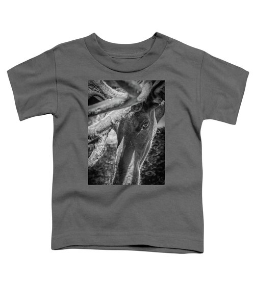 Caribou Black And White Toddler T-Shirt