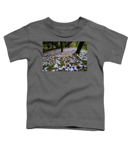 Carpet Of Petals Toddler T-Shirt