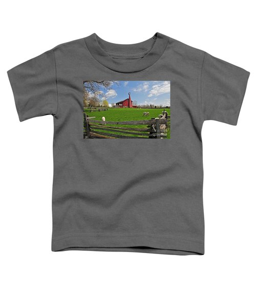 D14d-43 Carriage Hill Farm Metro Park Photo Toddler T-Shirt