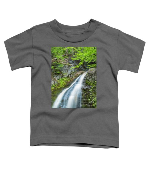 Cascade Waterfalls In South Maine Toddler T-Shirt