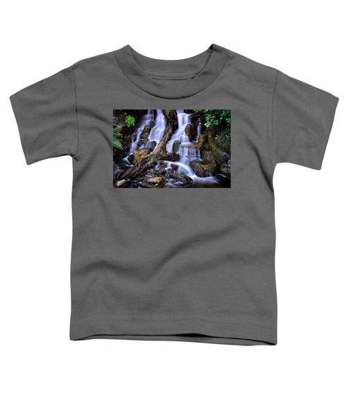 Cascades Toddler T-Shirt