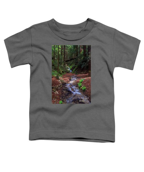 Castro Canyon In Big Sur Toddler T-Shirt