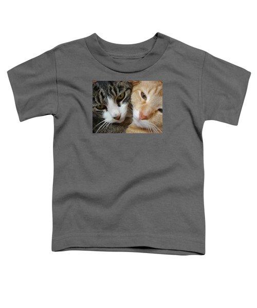Cat Faces Toddler T-Shirt
