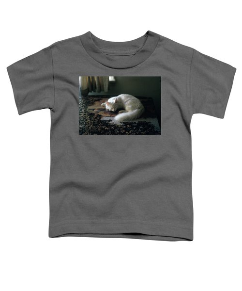 Cat On A Puzzle Toddler T-Shirt