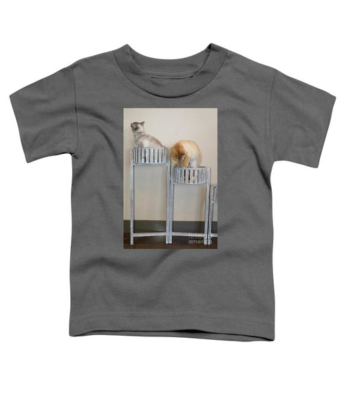 Cats In Baskets Toddler T-Shirt
