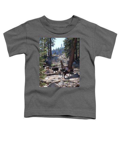 Cattle Climbing Toddler T-Shirt