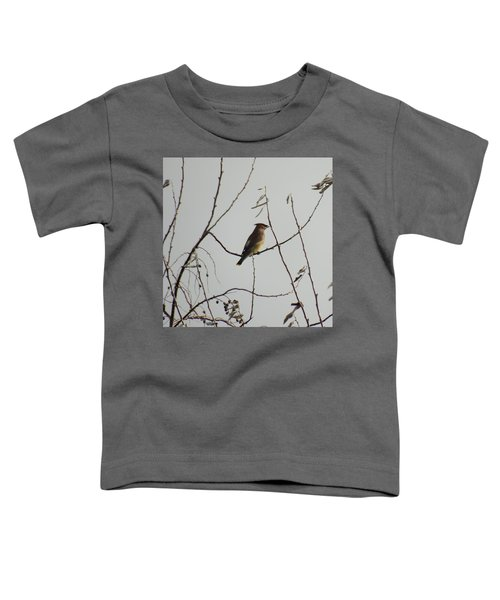 Cedar Wax Wing In Tree Toddler T-Shirt by Kenneth Willis