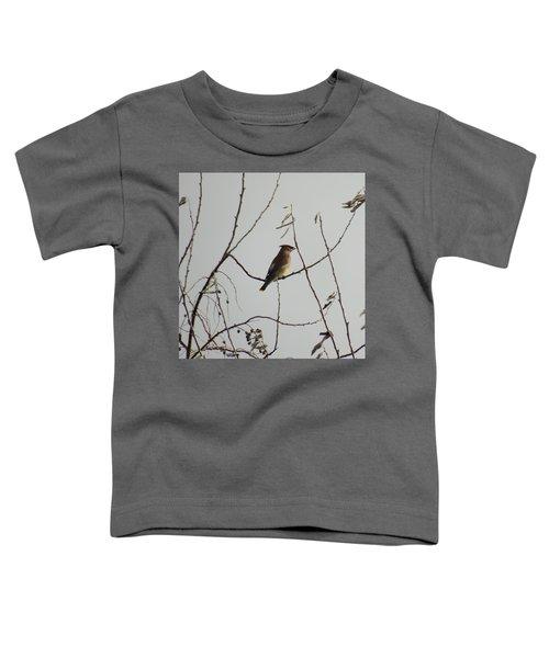 Cedar Wax Wing In Tree Toddler T-Shirt