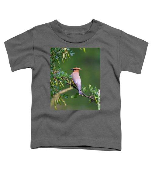 Cedar Waxwing 1 Toddler T-Shirt