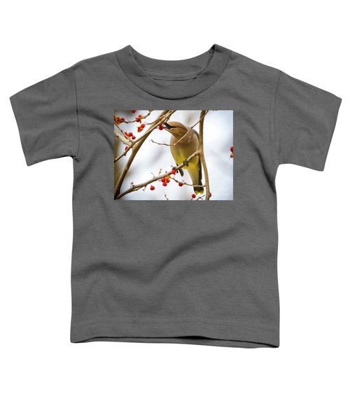 Cedar Waxwing Feeding  Toddler T-Shirt