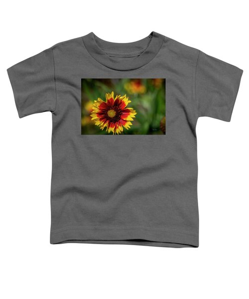 Celebration Of Yellow And Red Toddler T-Shirt