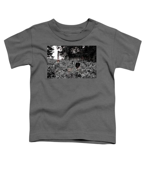 Cemetery In Red Toddler T-Shirt