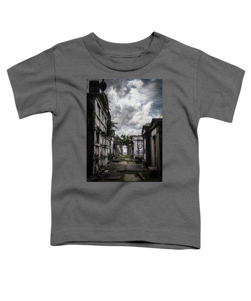 Cemetery Row Toddler T-Shirt