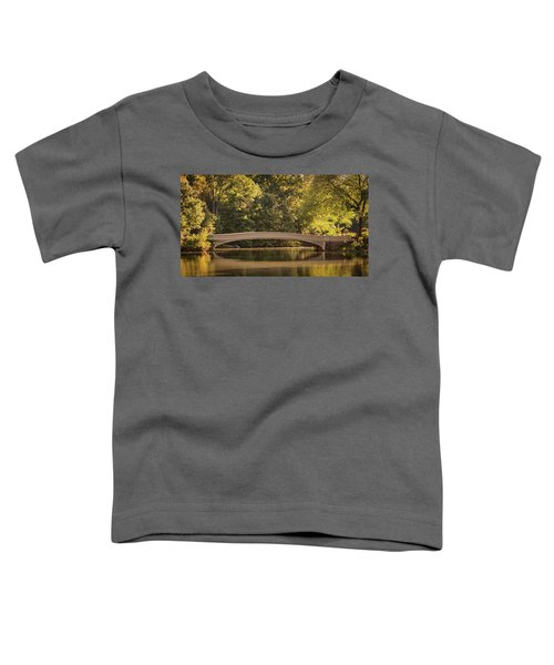 Central Park Bridge Toddler T-Shirt