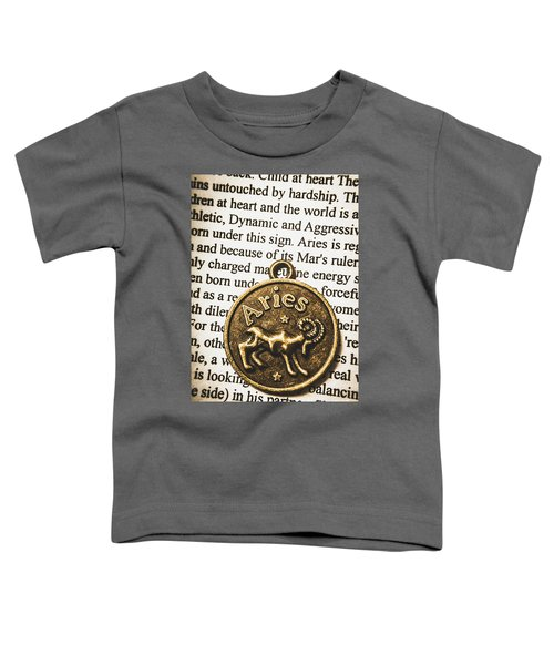 Charm Of Aries Toddler T-Shirt