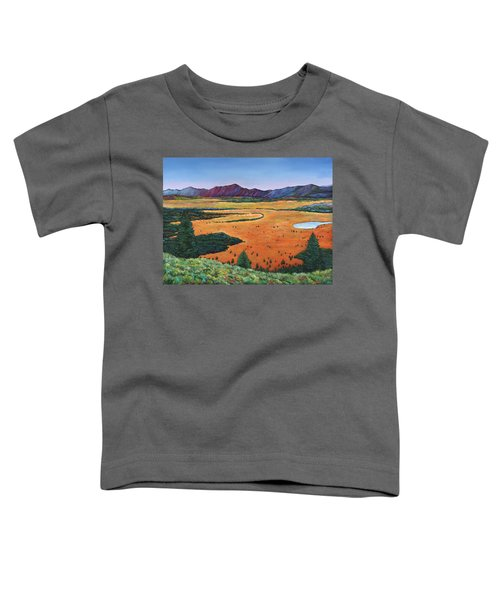 Chasing Heaven Toddler T-Shirt