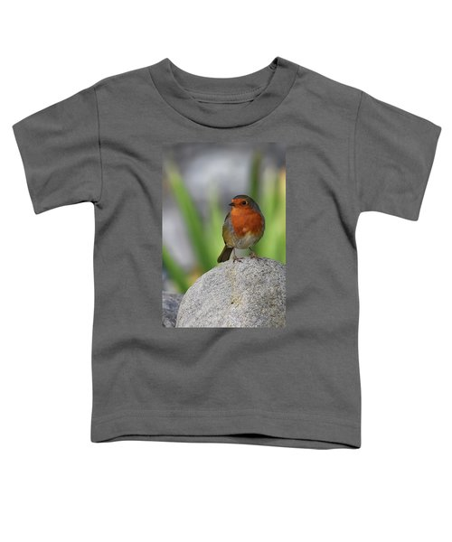 Cheeky Chappy Toddler T-Shirt