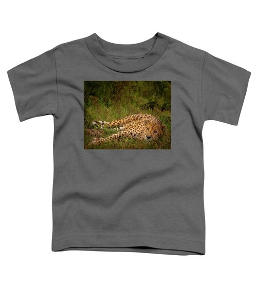 Cheetah Resting, Masai-mara Toddler T-Shirt