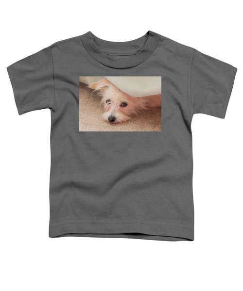 Chica In Hiding Toddler T-Shirt