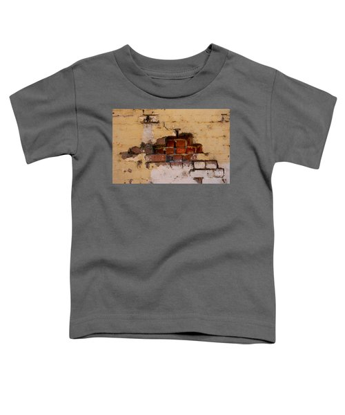 Chico Wall 79 Toddler T-Shirt