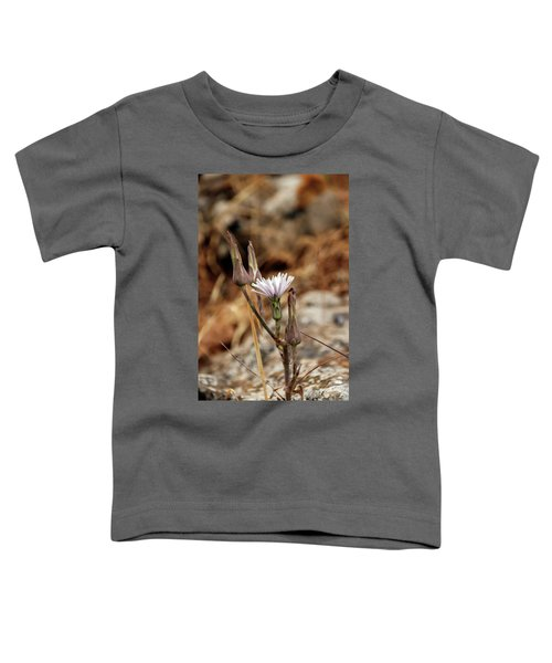 Chicory Flower Bud Closeup Toddler T-Shirt