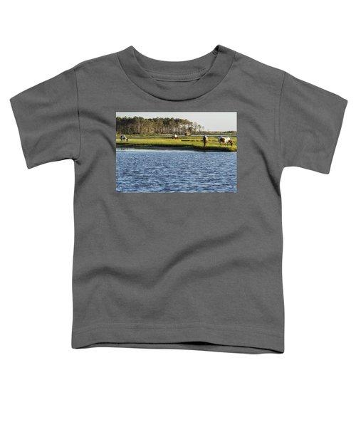 Chincoteague Ponies On Assateague Island Toddler T-Shirt