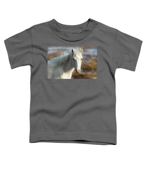 Chincoteague White Pony Toddler T-Shirt
