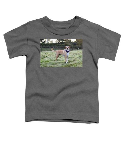 Chloe At The Dog Park Toddler T-Shirt
